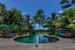 Permata Ayung Private Estate, Ubud